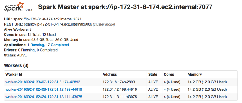 Dashboard showing spark cluster running.