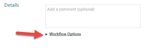 Workflow Options.png