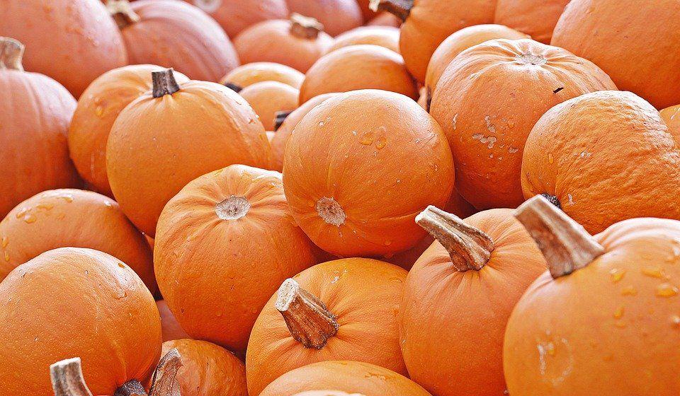 pumpkin-4461665_960_720