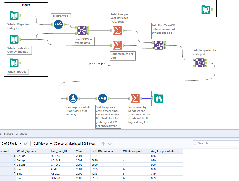 alteryx-whales.PNG