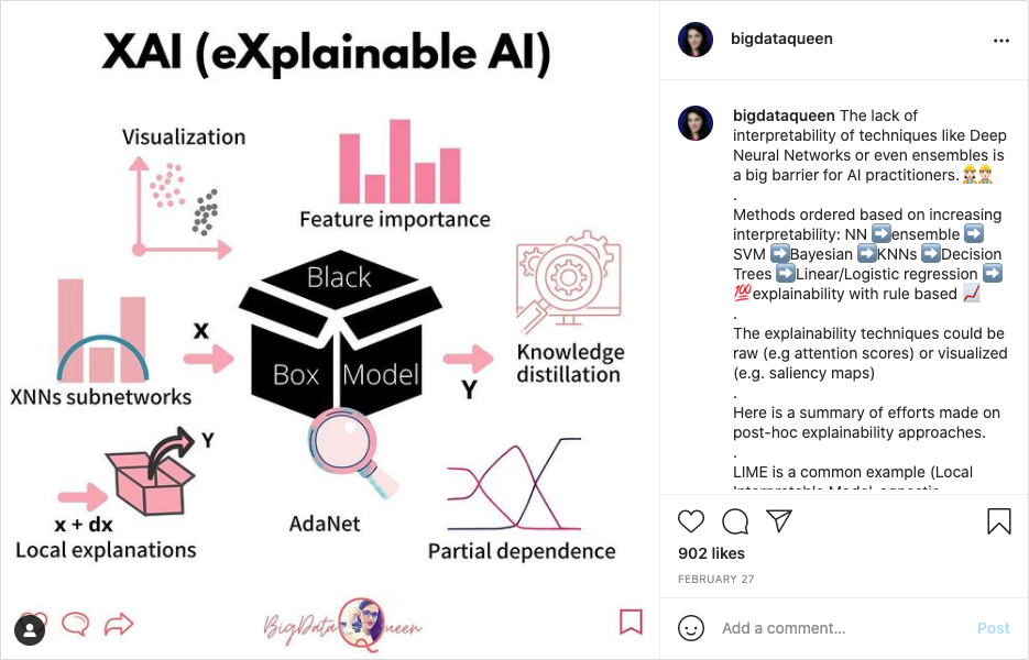 Example of Big Data Queen post from Instagram