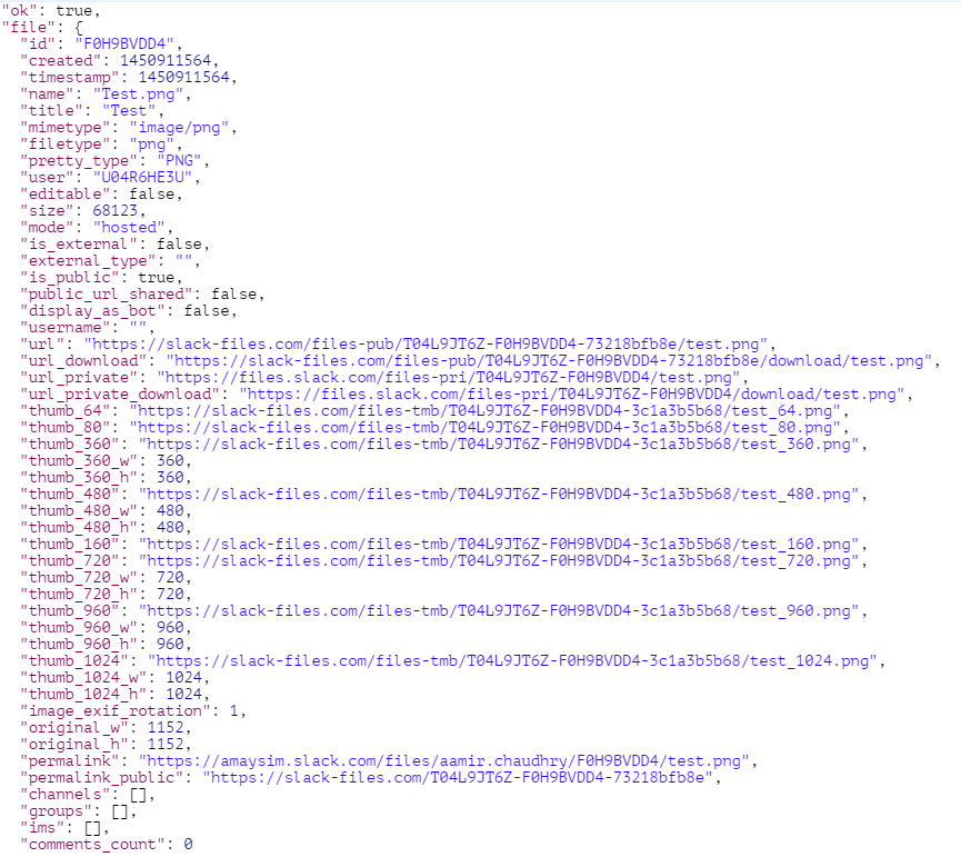 File.Upload Slack Body Response