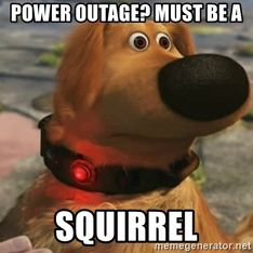 power-outage-must-be-a-squirrel.jpg