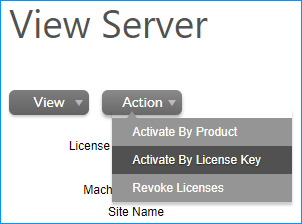 "Map or revoke licenses from the Server under the ""Action"" menu."