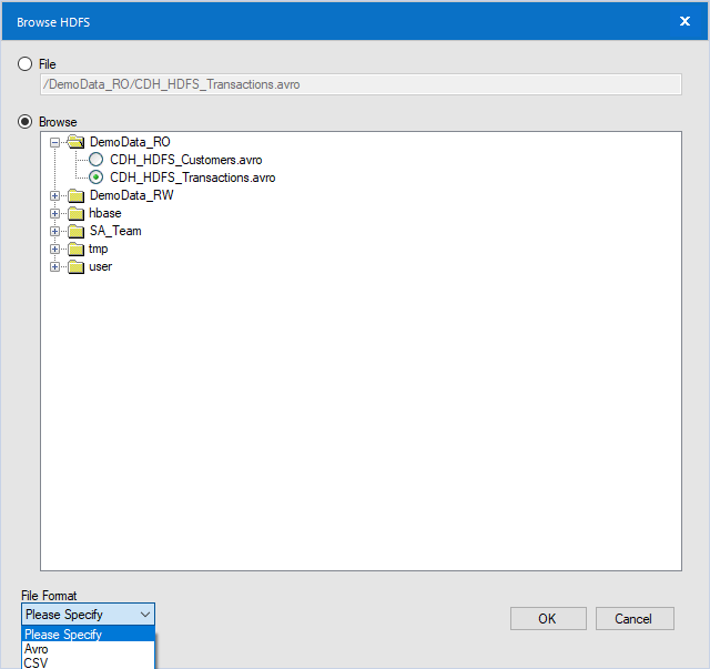 The HDFS File Selection tool only allows Avro or CSV file types.