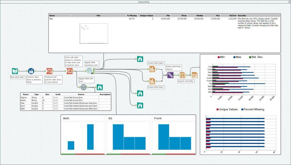 Data profiling.jpg