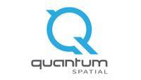 Quantum Spatial Logo Light Blue Q Gray Type on White.jpg