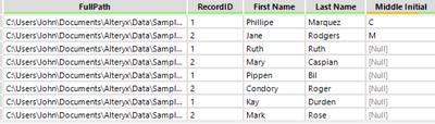 XLSX Wild Card Input - Result.PNG