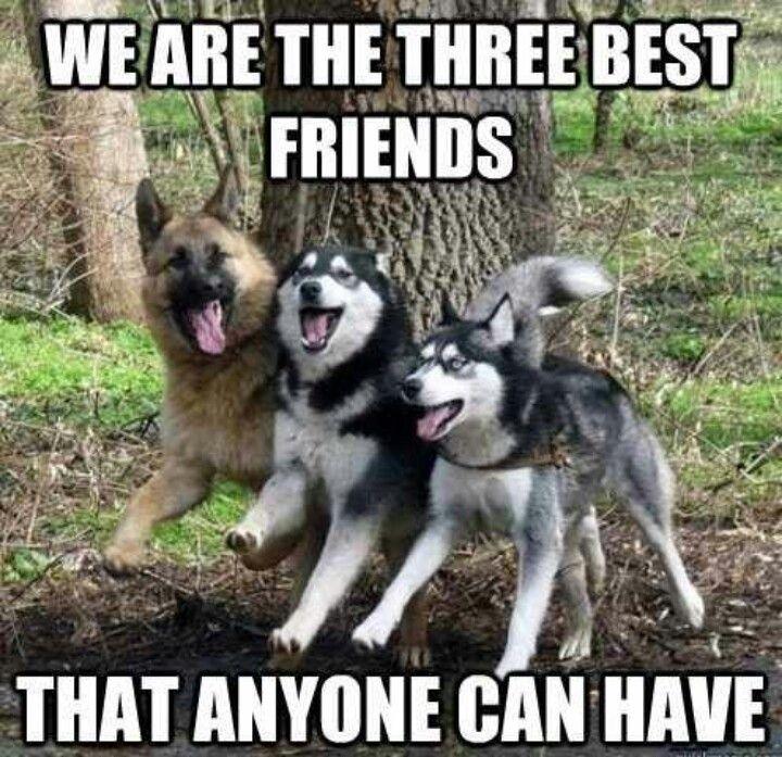 threebestfriends.jpg