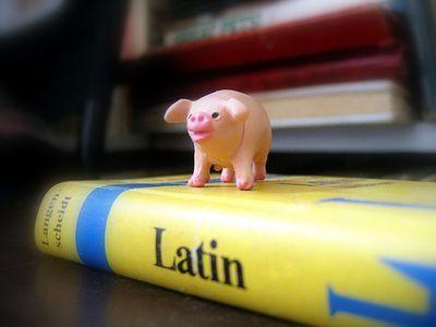 pig-latin.jpg